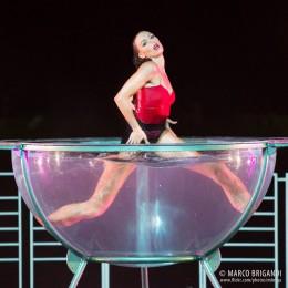 Gallery Waterbowl